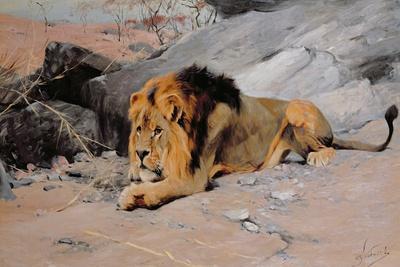 Lion Reclining in a Rocky Landscape