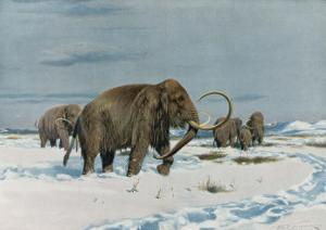 Mammoth Herd During the Ice Age by Wilhelm Kuhnert