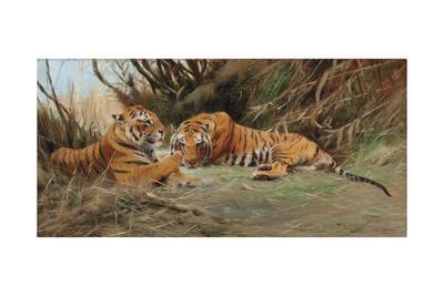 Tigers at Dawn, 1913