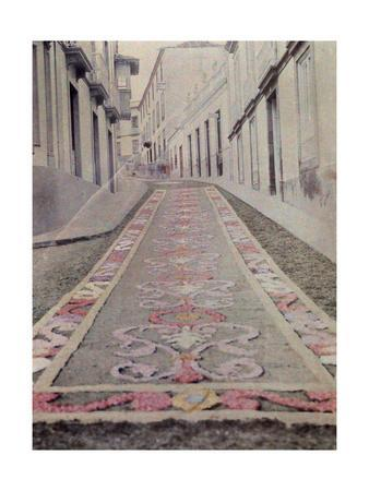 A Town's Street Is Covered by a Detailed Floral Carpet