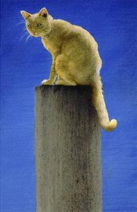 Pole Cat by Will Bullas