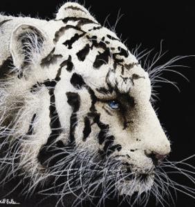 Tiger by Will Bullas