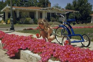 A girl kneeling beside a tricycle picks a bouquet of pink flowers by Willard Culver