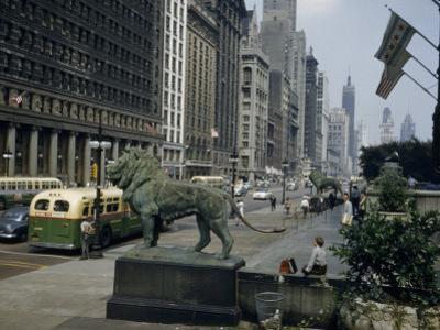 Bronze Lions Overlook Pedestrians and Traffic on Michigan Avenue by Willard Culver