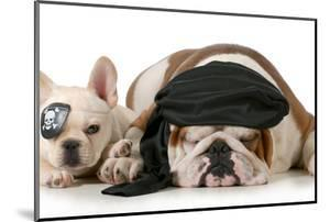 Dog Pirates - French and English Bulldog Dressed Up Like Pirates by Willee Cole