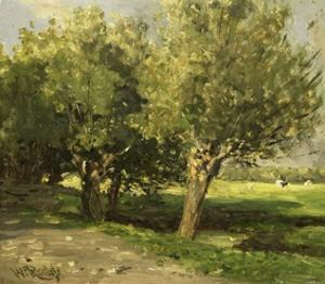 Wilgebome (Willow Trees), 1st, 1875-85 by Willem Roelofs I