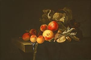 Still Life of Plums, Peaches, Almonds and Grapes on a Draped Ledge, 1650 by Willem van Aelst