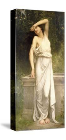 A Classical Beauty by a Well