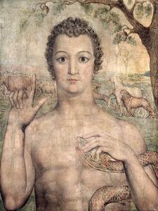 Adam Naming the Beasts, 1810 by William Blake