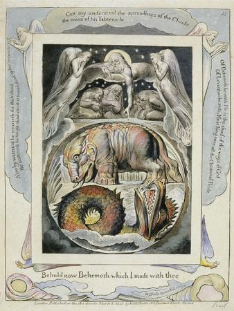 Behemoth and Leviathan from the Book of Job (Pl.15), C.1793 (Hand Tinted Line)