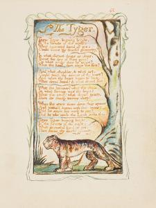Songs of Innocence and of Experience: The Tyger, c.1825 by William Blake
