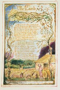 The Lamb: Plate 8 from 'Songs of Innocence and of Experience' C.1815-26 by William Blake