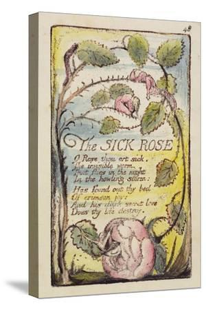 The Sick Rose', Plate 48 from 'Songs of Innocence and of Experience' [Bentley 39] C.1789-94