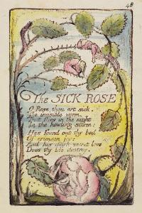 The Sick Rose', Plate 48 from 'Songs of Innocence and of Experience' [Bentley 39] C.1789-94 by William Blake