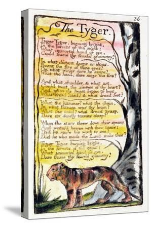 The Tyger', Plate 36 (Bentley 42) from 'Songs of Innocence and of Experience' (Bentley Copy L)