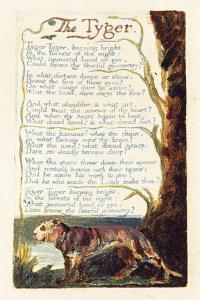 'The Tyger', Plate 41 from 'Songs of Experience', 1794 by William Blake