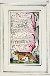 The Tyger: Plate 43 from 'Songs of Innocence and of Experience' C.1802-08 by William Blake