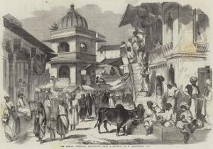 The Bazaar, Oodipoor, Rajpootana by William Carpenter