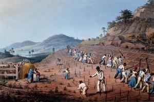 Breaking Up the Land, from 'ten Views in the Island of Antigua', 1823 by William Clark