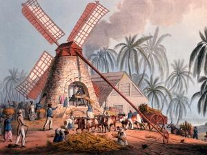 The Millyard, from 'ten Views in the Island of Antigua', 1823 by William Clark