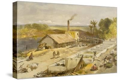 Indigo Factory - Bengal, from 'India Ancient and Modern', 1867 (Colour Litho)
