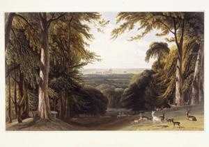 Windsor Castle from the Deer Park, C.1827-1829 by William Daniell