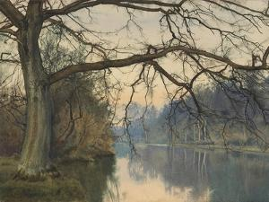 A Great Tree on a Riverbank, 1892 (Pencil, Pen and Black Ink and W/C on Paper) by William Fraser Garden