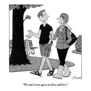 """We can't even agree on how cold it is."" - New Yorker Cartoon by William Haefeli"