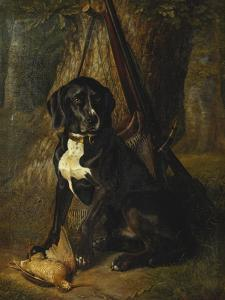 A Gun Dog with a Woodcock, 1842 by William Hammer