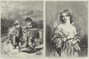 Fine Arts by William Hemsley
