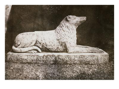 Effigy of Sir Walter Scott's Favourite Dog, Maida