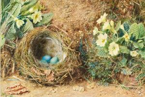 Bird's Nest with Three Blue Eggs and Primroses by William Henry Hunt