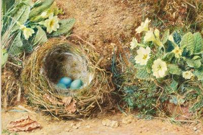 Bird's Nest with Three Blue Eggs and Primroses