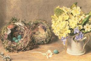 Spring Flowers and Birds' Nests, C.1830 by William Henry Hunt