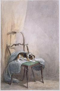 Study of a Dog on a Chair by William Henry Hunt
