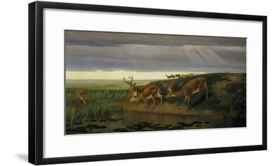 Deer on the Prairie, 1884
