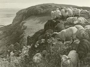 On the Hillside by William Holman Hunt