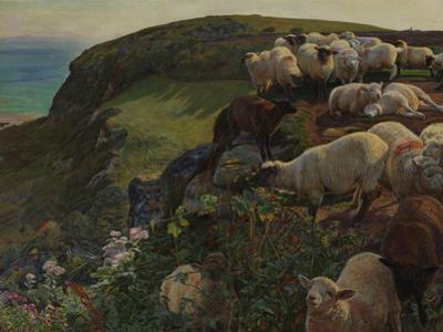 Our English Coasts, 1852 ('Strayed Sheep') by William Holman Hunt