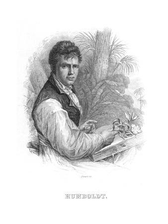 Alexander Von Humboldt, German Naturalist, C1830