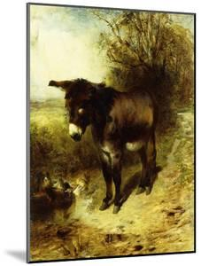 A Brown Study, 1853 by William Huggins