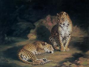 A Pair of Leopards, 1845 by William Huggins