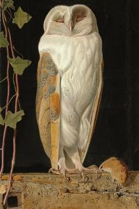 The White Owl: 'Alone and Warming His Five Wits, the White Owl in the Belfry Sits', 1856 by William J^ Webbe