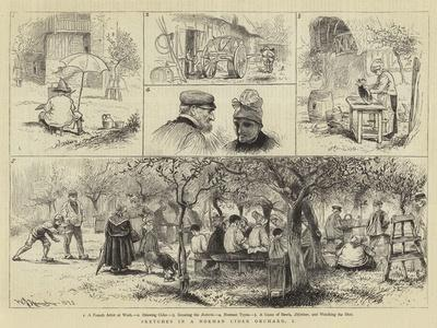 Sketches in a Norman Cider Orchard