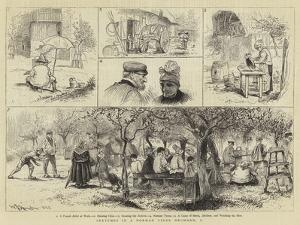 Sketches in a Norman Cider Orchard by William John Hennessy