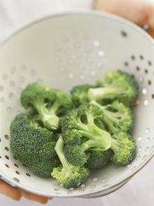 Freshly Washed Broccoli Florets in Sieve by William Lingwood