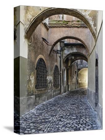 Cobblestone Streets in Ljubljana
