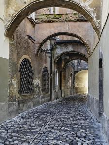 Cobblestone Streets in Ljubljana by William Manning