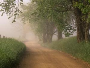 Fog Over Rural Road in Great Smoky Mountains by William Manning