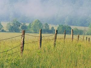 Rural Fence by William Manning