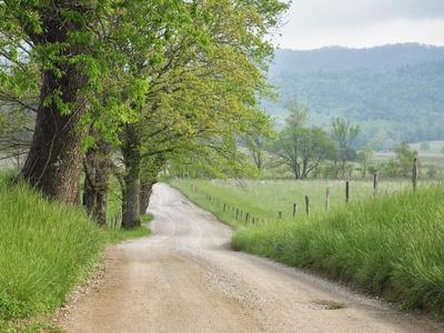 Rural Road in Cades Cove